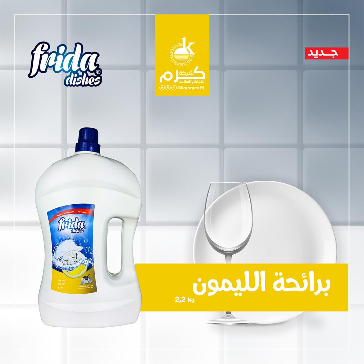 Frida Dishes (Lemon Smell) 2.2 Kg